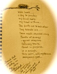 A poem I found from one of my own writer's notebook entries.